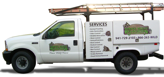 Nuisance Wildlife Removal Inc. is a licensed pest control operator.