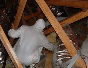 hazmat-attic